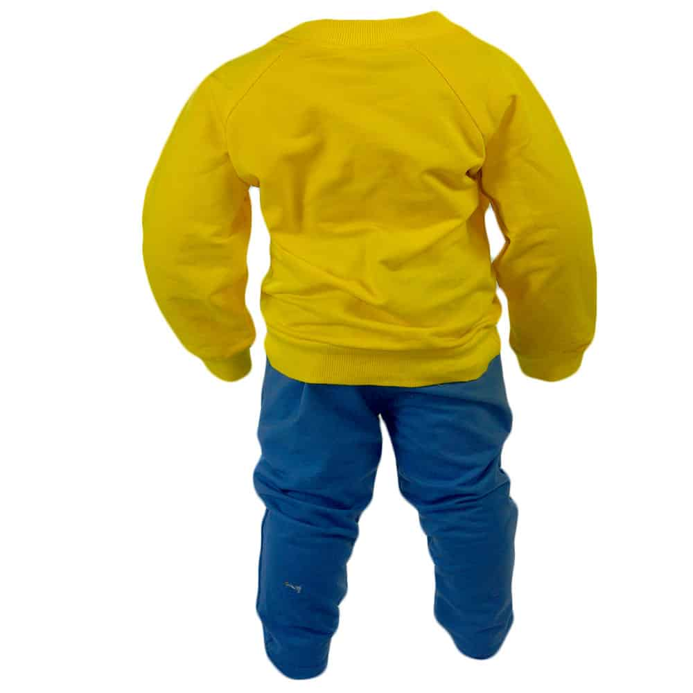 treninguri-bebelusi-online