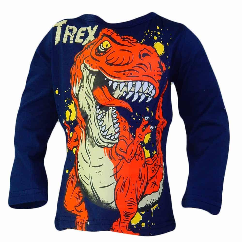 Bluze copii bumbac. Bluza baieti Dinozaur