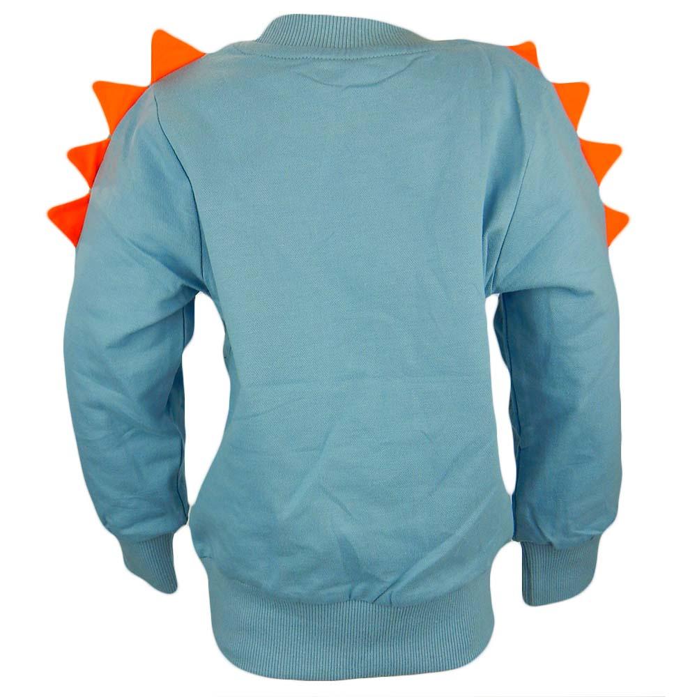 bluze-pentru-baieti